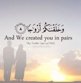 Marriage between Islam and the Western Culture (2/2)