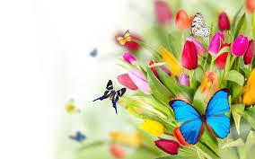 women - flowers